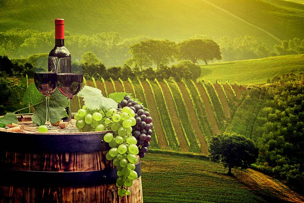 Absolute Italy - Customizing Italian Travel - Southern Tuscany with Brunello Wines