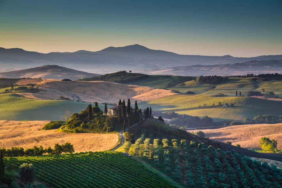 Florence Transfer with Sightseeing Option C: Southern Tuscany Sightseeing