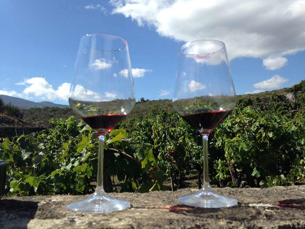 Absolute Italy - Customizing Italian Travel - Glasses of wine