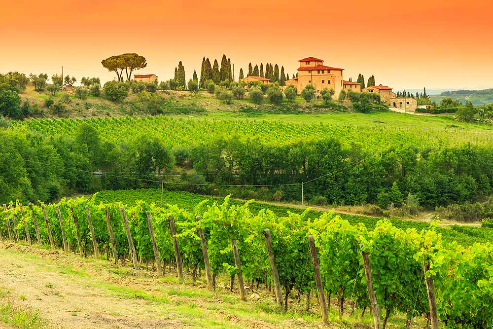 Rome Tours and Transfers Option A: Chianti Sightseeing